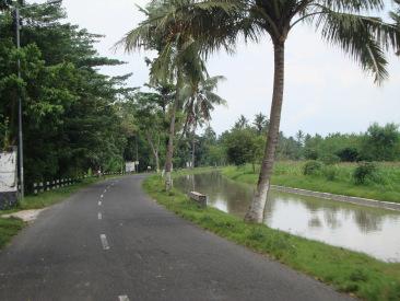 De weg van mijn desa naar Balung, met een kanaal uit de nederlandse tijd