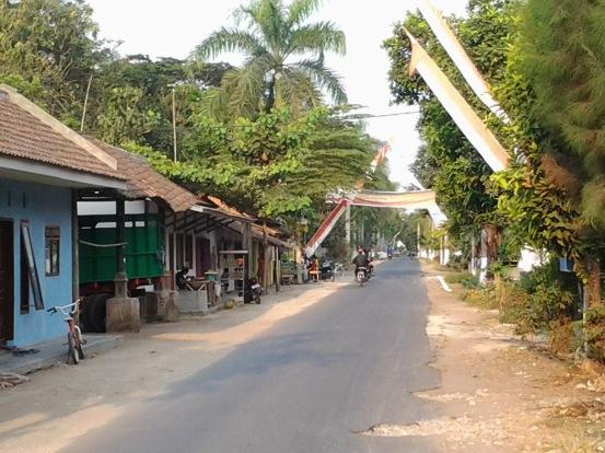 Afbeeldingsresultaat voor desa paleran